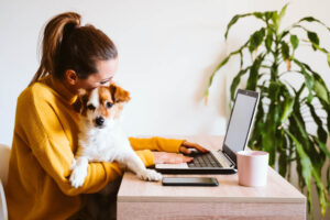 Doggami, nasce il social network per i cani