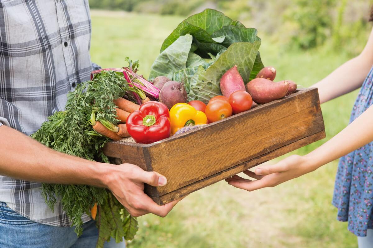 10 consigli per acquistare frutta e verdura in estate