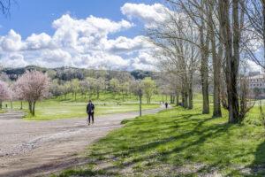 Lista dei parchi dove allenarsi all'aperto a Roma