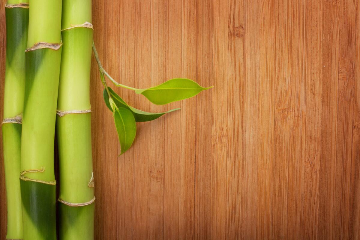 pavimenti in bambù