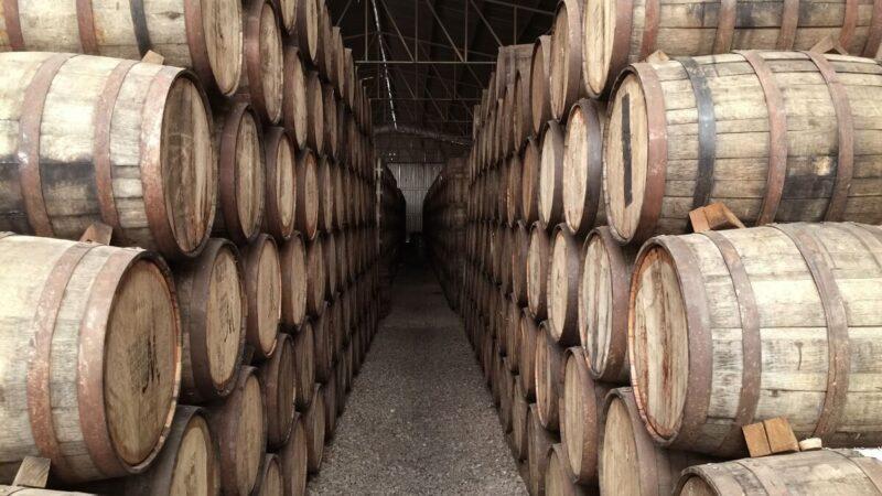 produrre vino botti
