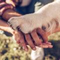 i cani migliorano lo sviluppo dei bambini