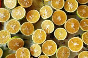 limone in tazza