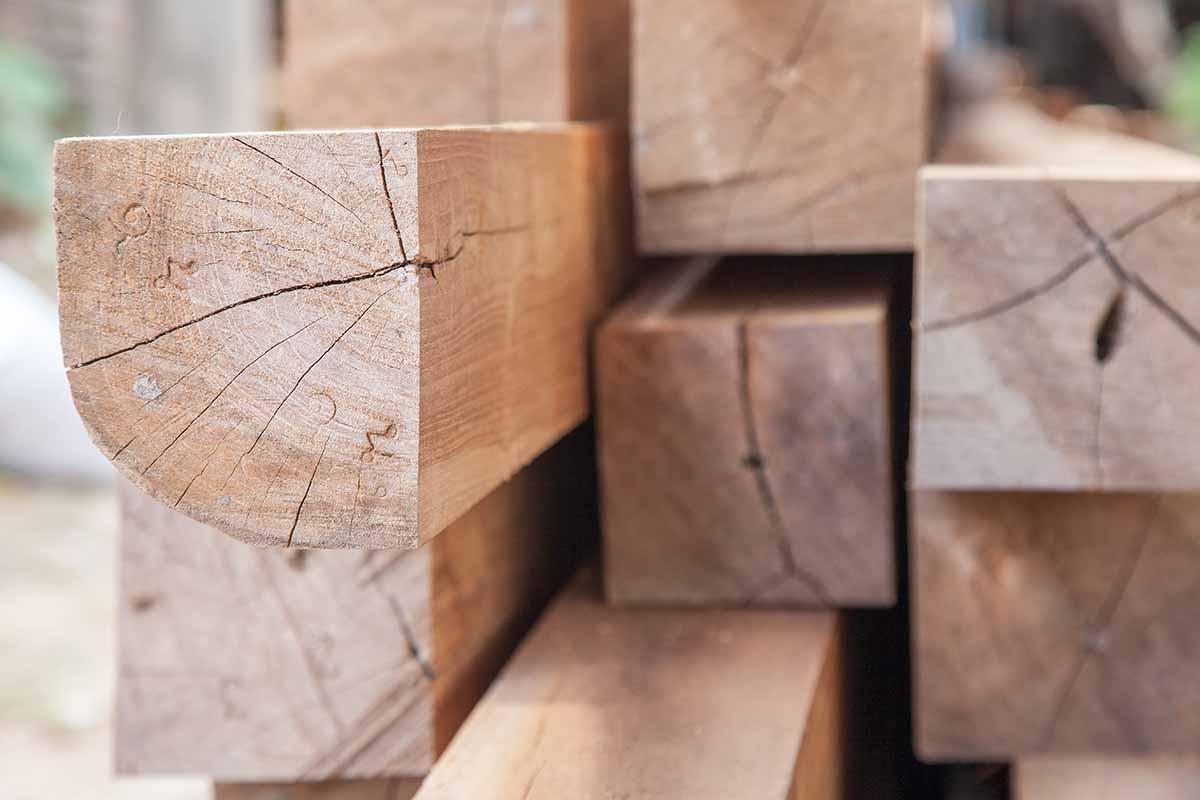 legno trasparente come il vetro
