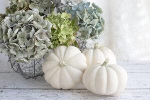Pillole di interior design: decorare casa con le zucche