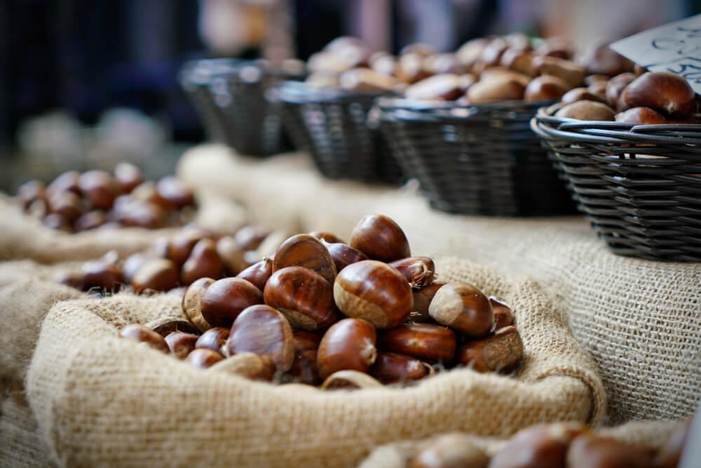 Raccolta delle castagne in Piemonte: dove andare?