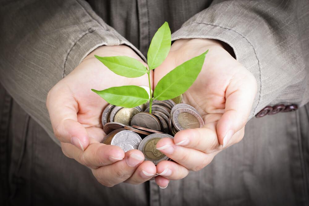 Classe energetica degli elettrodomestici: come risparmiare per aiutare l'ambiente