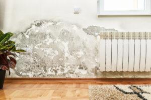 Problemi di umidità nei muri: 4 soluzioni per risolverli