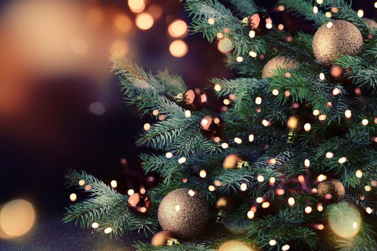 scegliere le luci per l'albero di Natale consigli addobbi