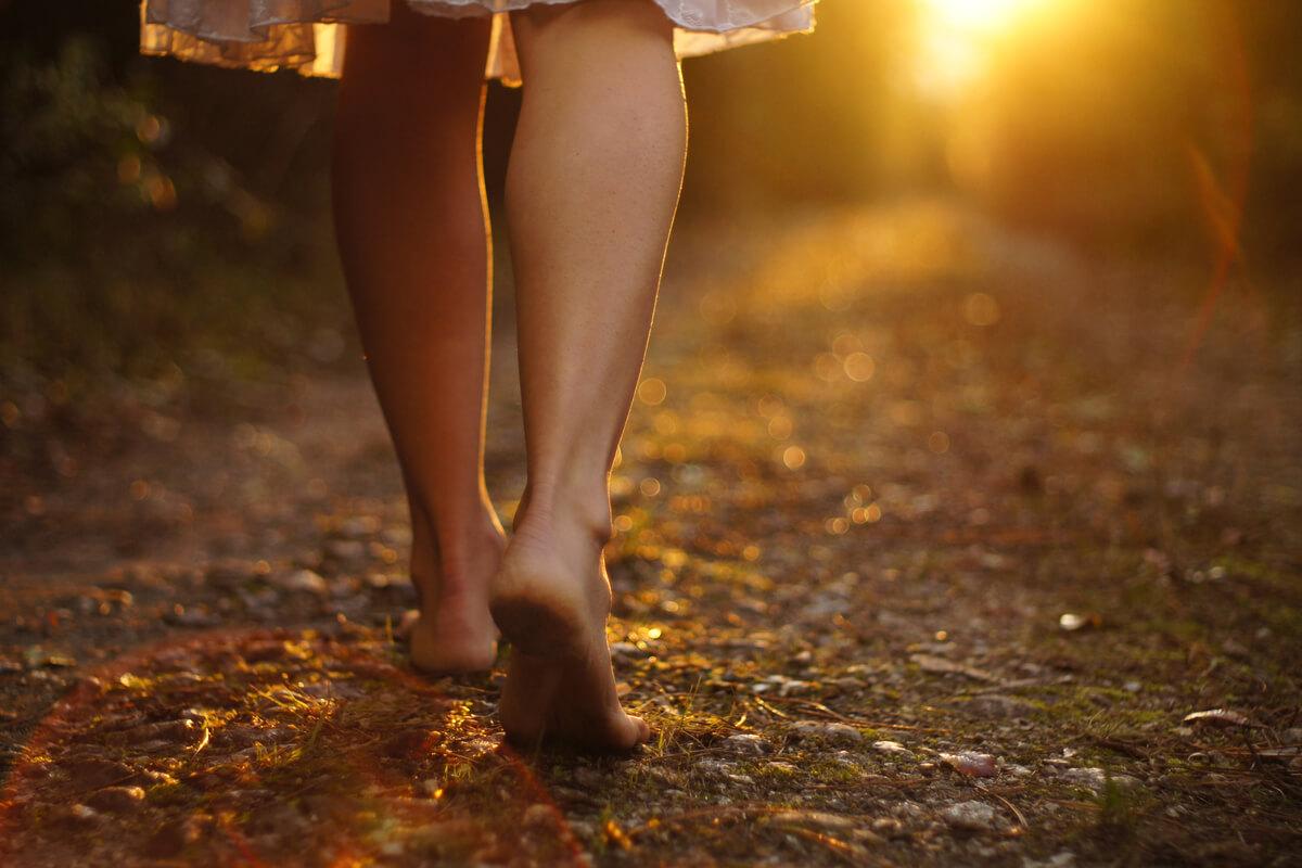 benefici di passeggiare nel bosco salute attività fisica