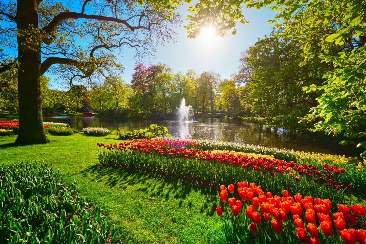 Preparare il giardino per la primavera