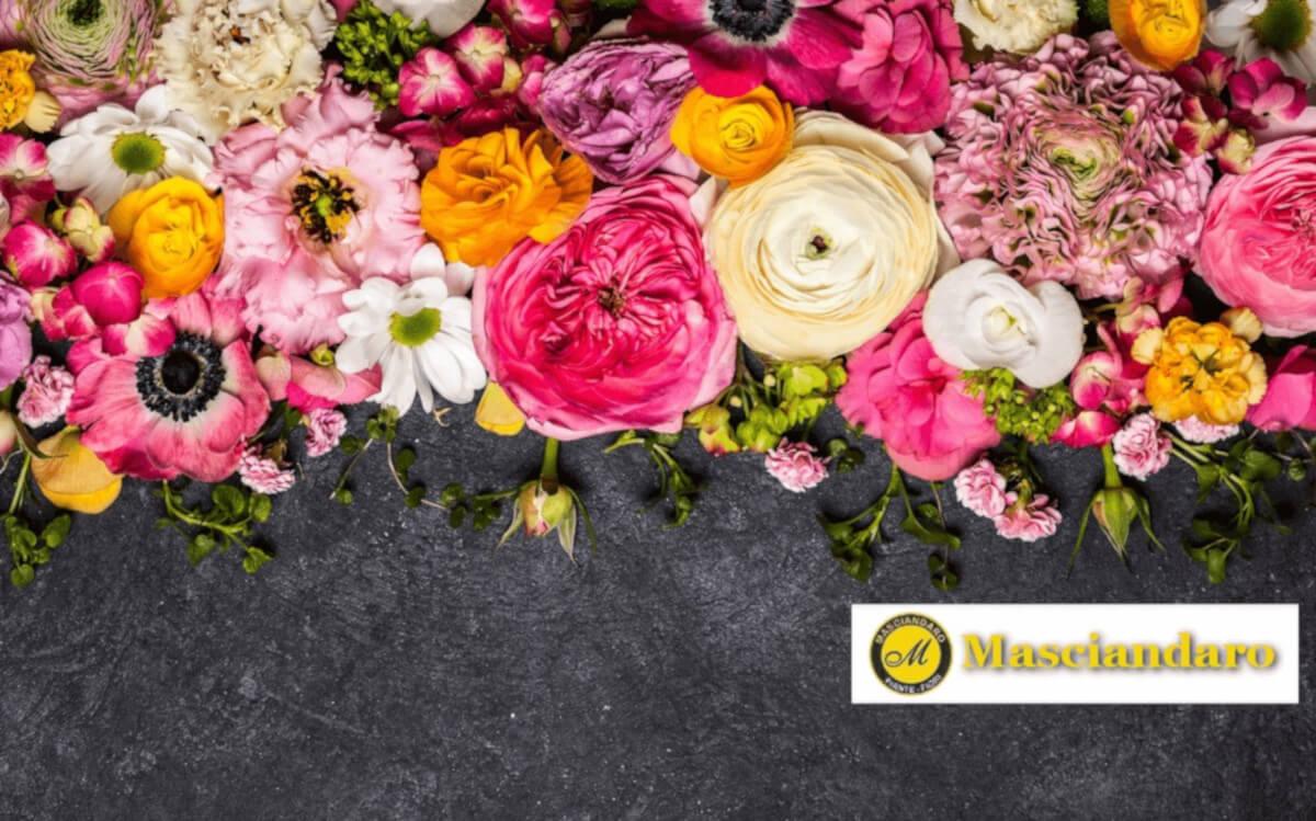 Masciandaro piante e fiori