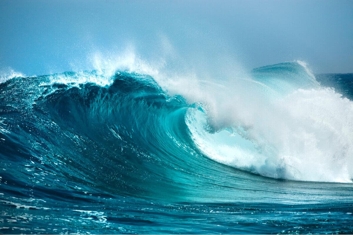 Acidificazione del mare - ambiente pianeta