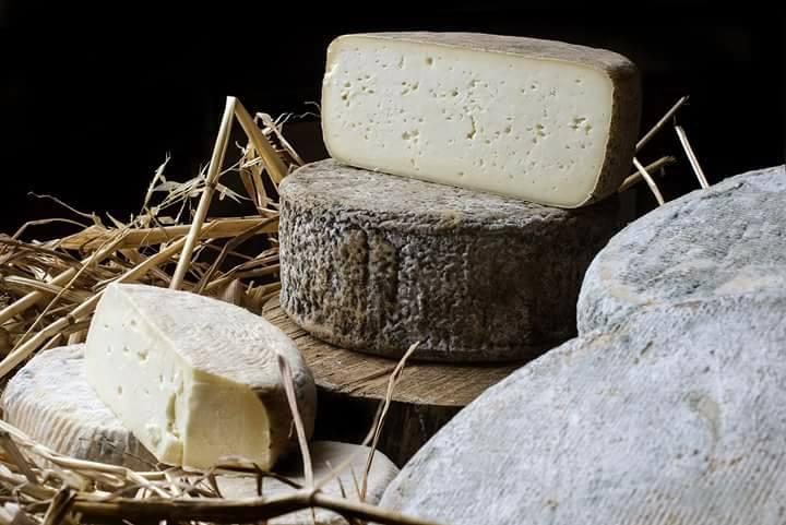 Azienda agricola Saba formaggio pecorino