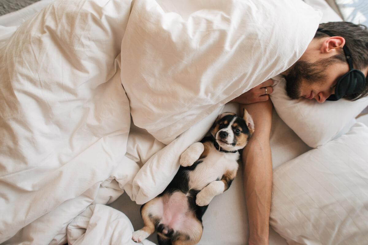 Dormire bene durante il lockdown come fare
