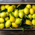 Limone, un agrume dalle preziose proprietà benefiche
