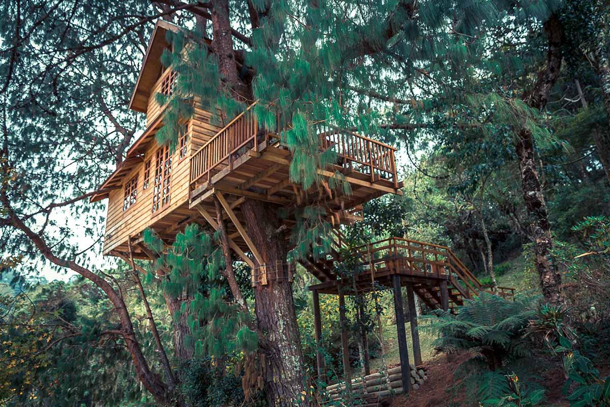 soggiornare in una casa sull'albero in Italia