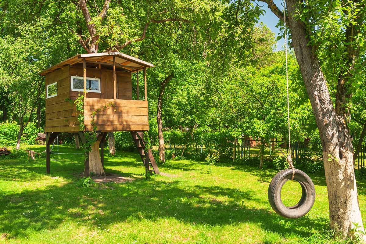 Dove soggiornare in una suggestiva casa sull'albero in Italia