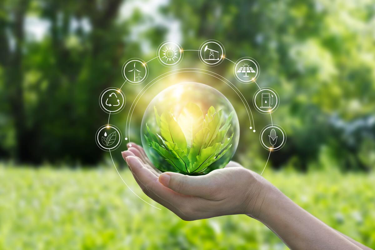 la startup dell'efficienza energetica idee green energia sostenibile