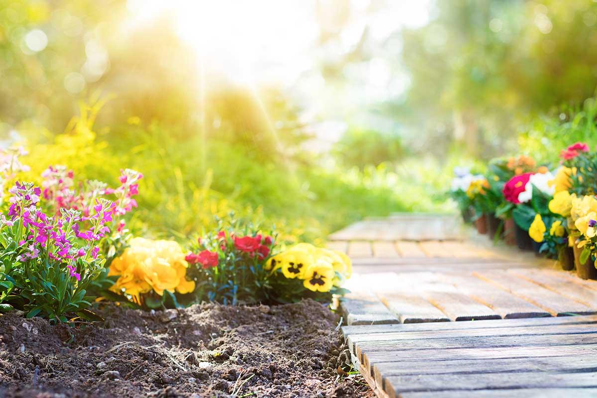 Consigli e idee per il tuo giardino di primavera