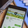 Le iniziative sostenibili nel mondo Ecosia il motore di ricerca che pianta alberi