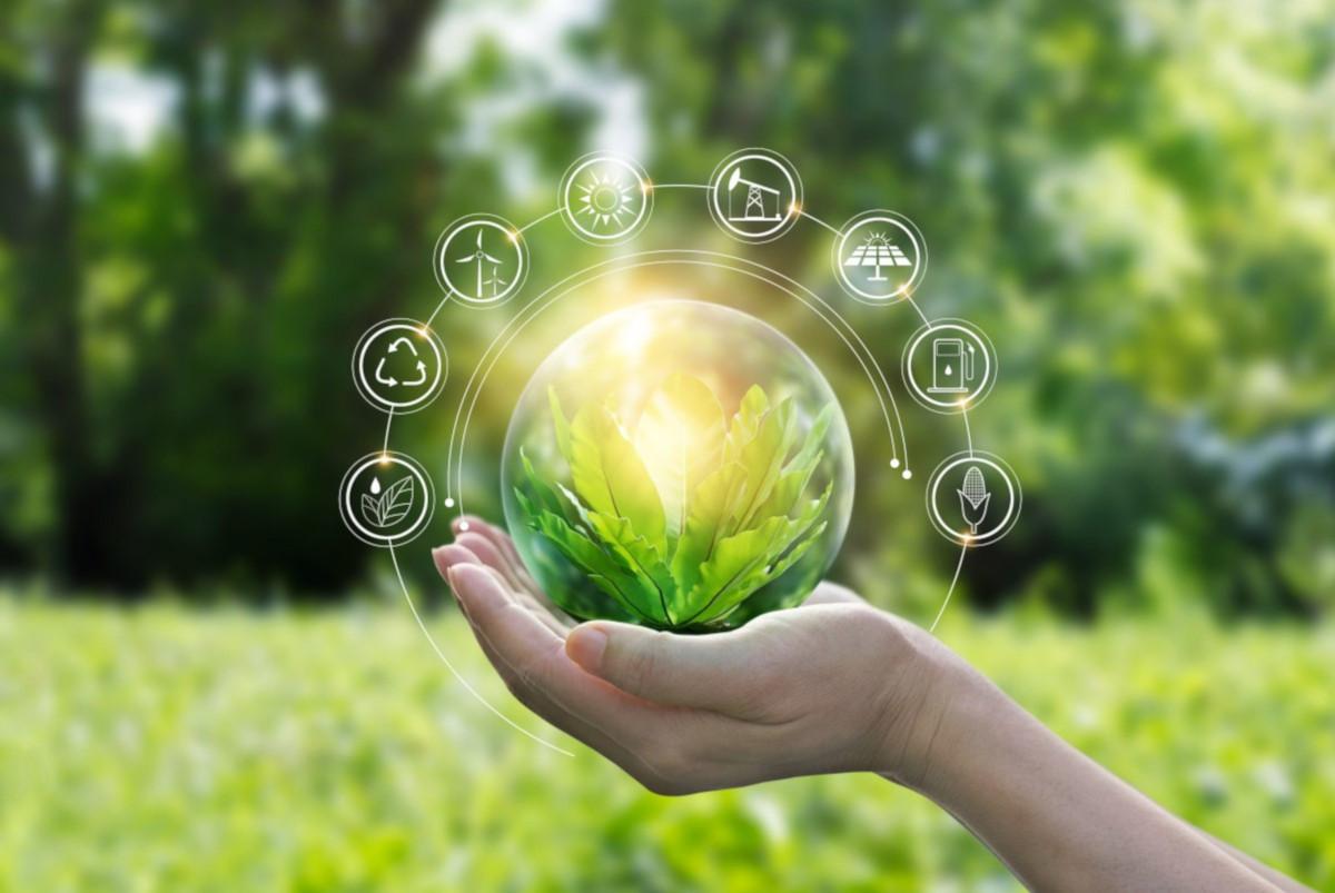 Sostenibilità quali cambiamenti porterà il 2021 dopo la pandemia