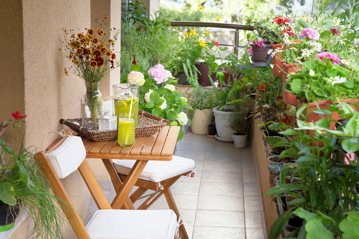 idee sostenibili per il balcone primaverile piante e consigli