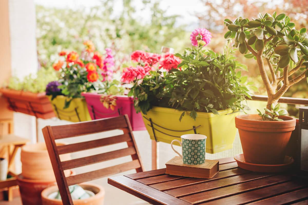 Idee sostenibili per il balcone primaverile - consigli e piante