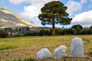 Che fine fa il rifiuto secco non riciclabile