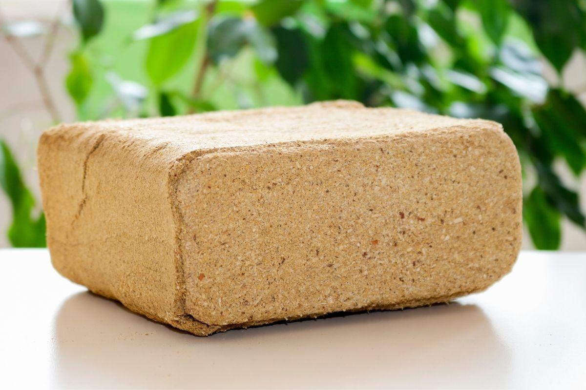 Il biomattone: un prodotto dei batteri che riduce le emissioni di CO2