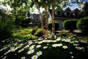 giardino da sogno - realizzarlo