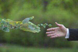 celebriamo la natura