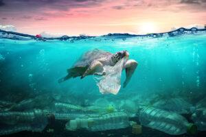 Cestini acchiappa rifiuti - inquinamento mari e oceani