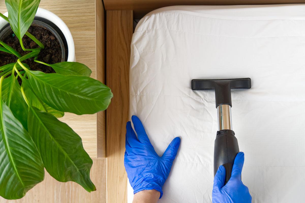 Pulizie di primavera stanza per stanza per igienizzare la casa