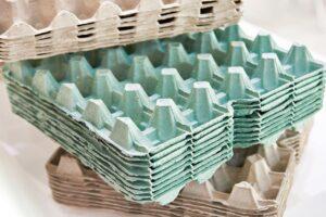 insonorizzare stanza con cartoni uova