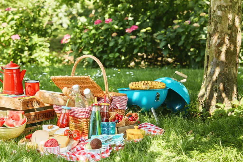 Come organizzare un pic-nic in giardino