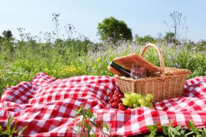 Picnic in Basilicata - cesto da picnic