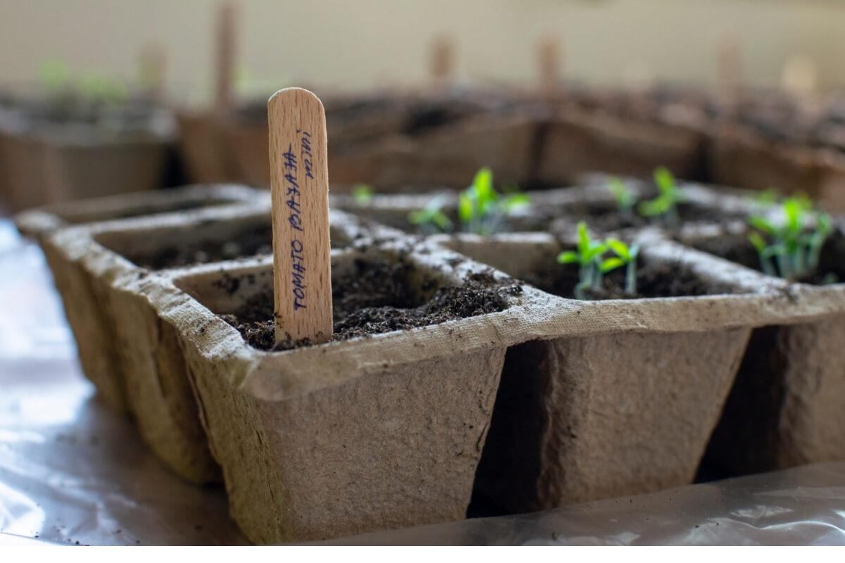 costruire una serra sostenibile