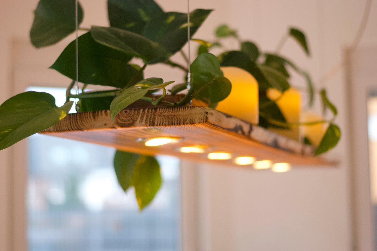 Sistemi di illuminazione sostenibili