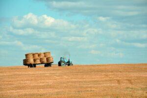 terreni agricoli edificabili- caratteristiche