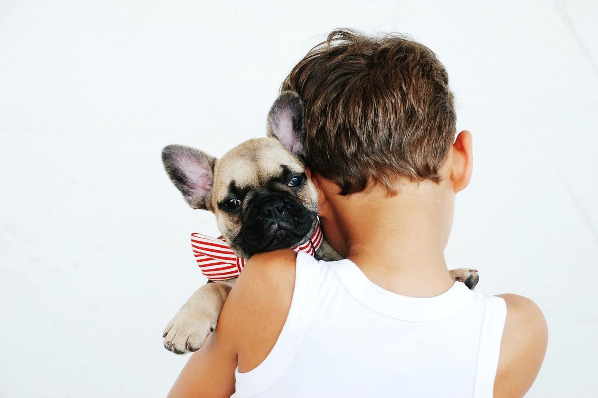 Bambini e animali domestici - rapporto