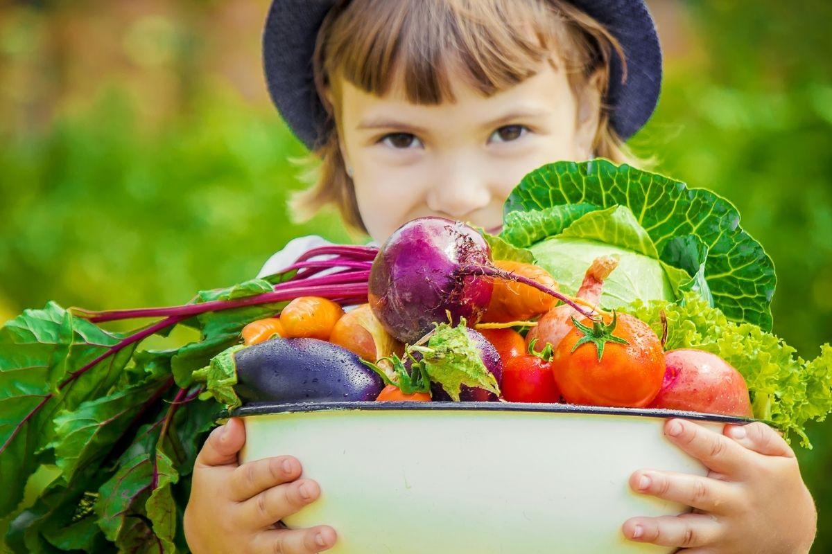Cos'è l'educazione alimentare