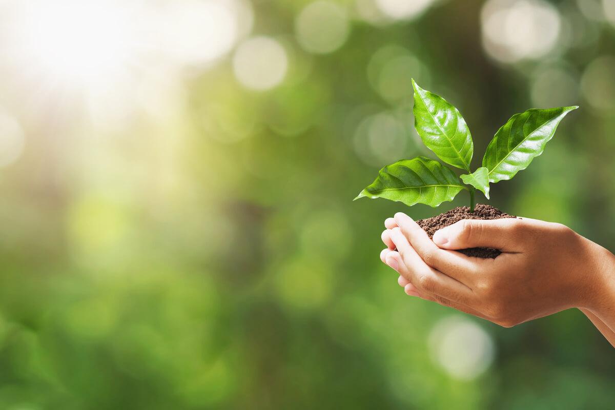 Gli italiani e l'ambiente - casa sostenibile