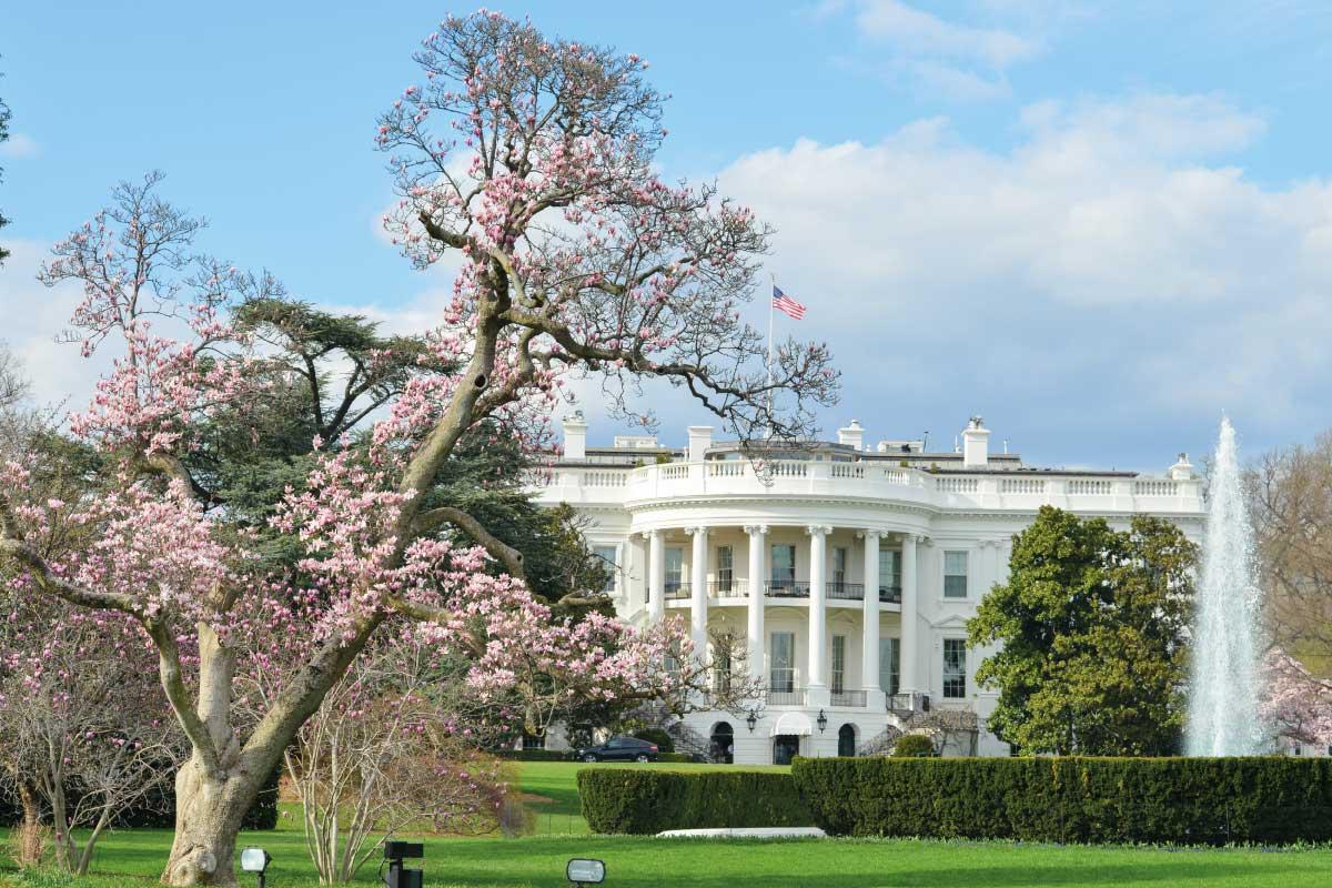La Casa Bianca: cosa sappiamo della residenza più famosa del mondo e della sua storia