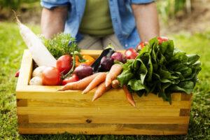 autosufficienza alimentare - ortaggi