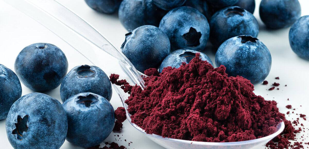 Frutta e verdura in polvere - mirtilli in polvere