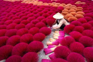 incenso magenta vietnam