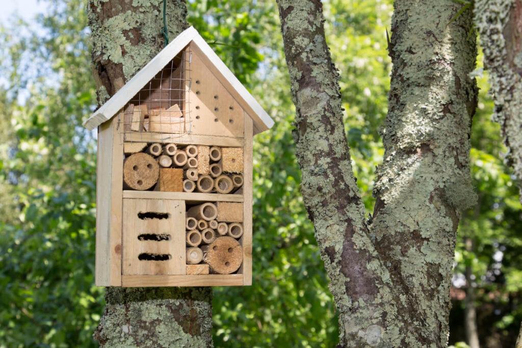 come costruire una casa per gli insetti