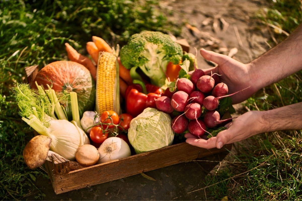 Alimentazione KM Zero: cos'è e perché è sostenibile