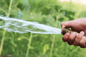 risparmiare acqua in giardino idee pratiche per tutti